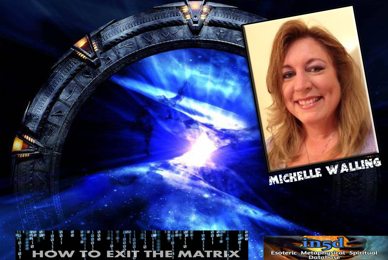 41st UFO Dinner Event: Michelle Walling: How to raise your Vibration, Wave X and Planetary Shift