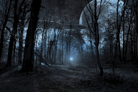 trueufology-forest-ufo-1951536_1280
